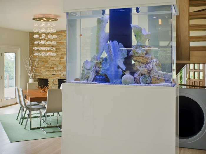 Home aquarium room divider by Owings Brothers Contracting